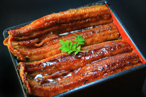 Unaju (Dish with grilled eel and rice)